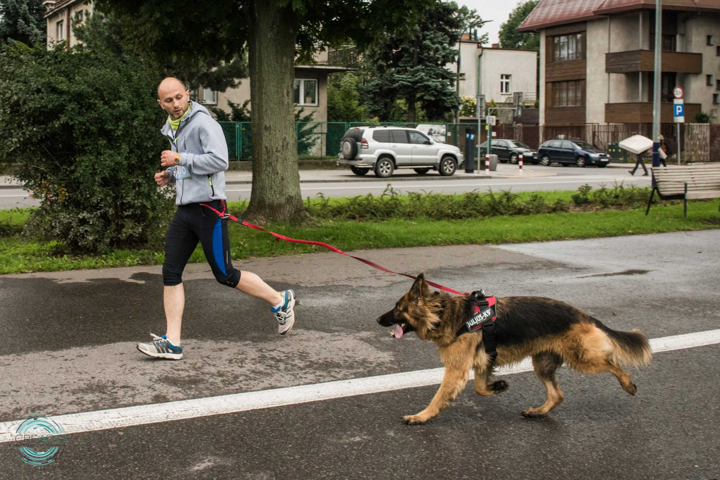 Dog Run w Krakowie