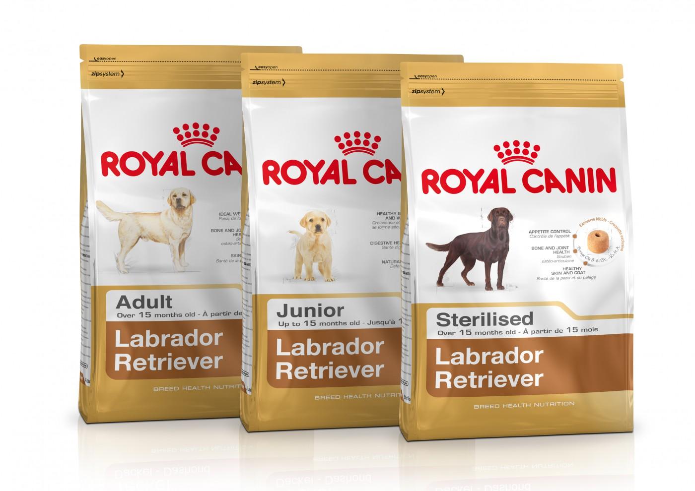 Royal Canin: karma dla psów rasy labrador retriever z dodatkiem L-karnityny