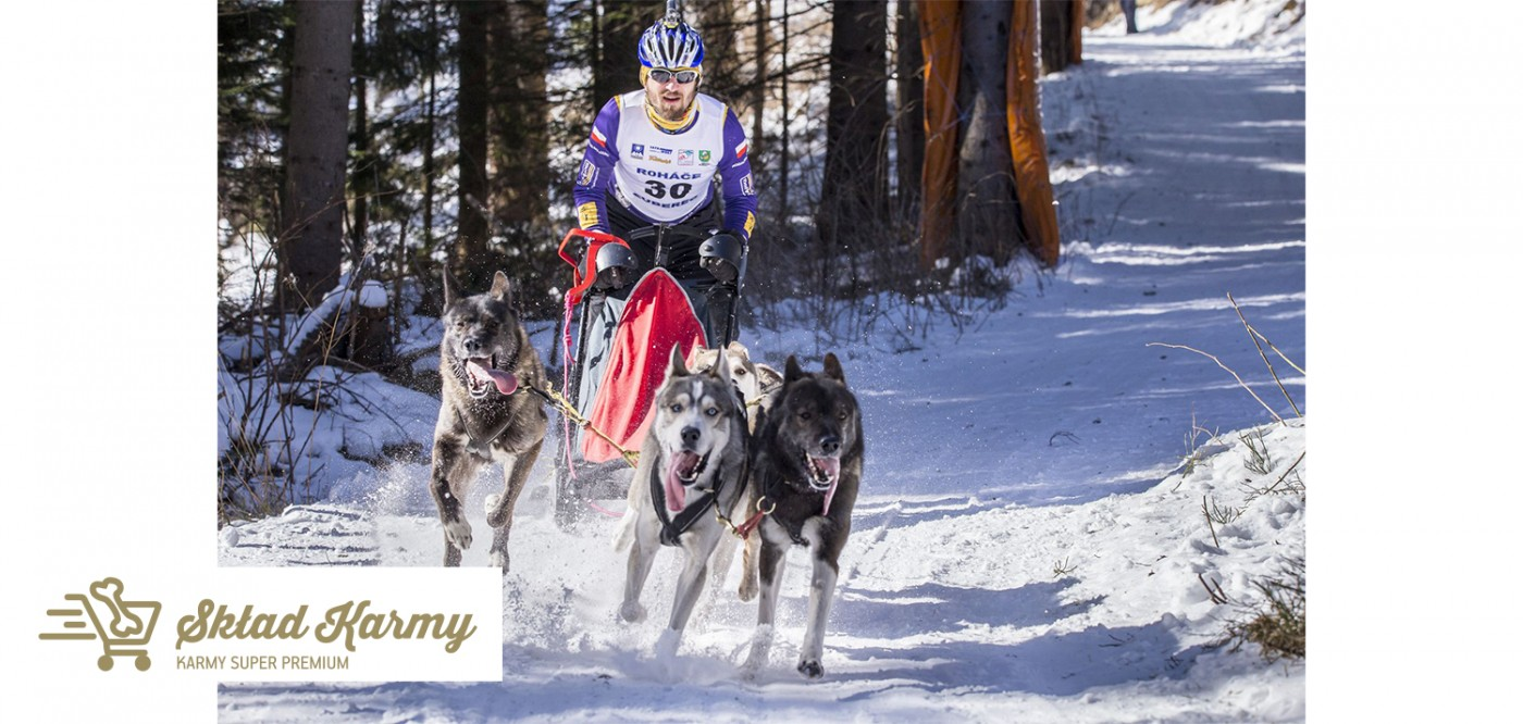 Skład Karmy i Fish4Dogs Polska wspierają psich sportowców