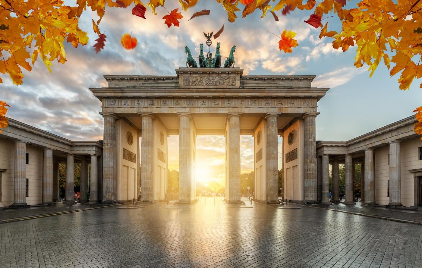 Niemiecki rynek zoologiczny kontynuuje wzrosty