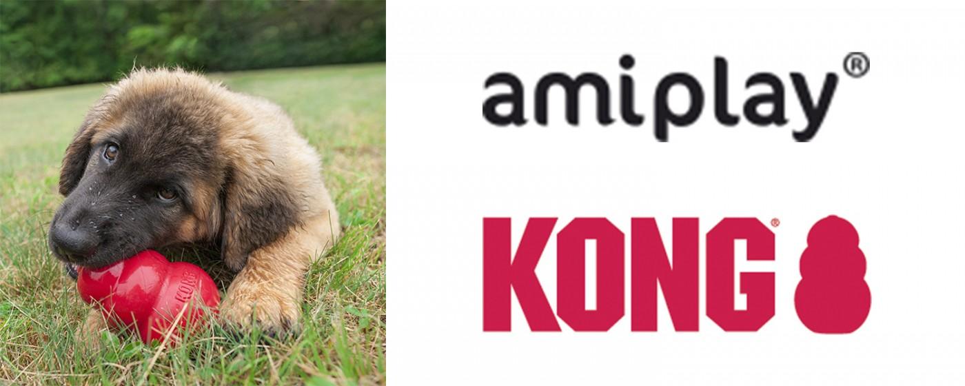 amiplay oficjalnym dystrybutorem firmy KONG w Polsce