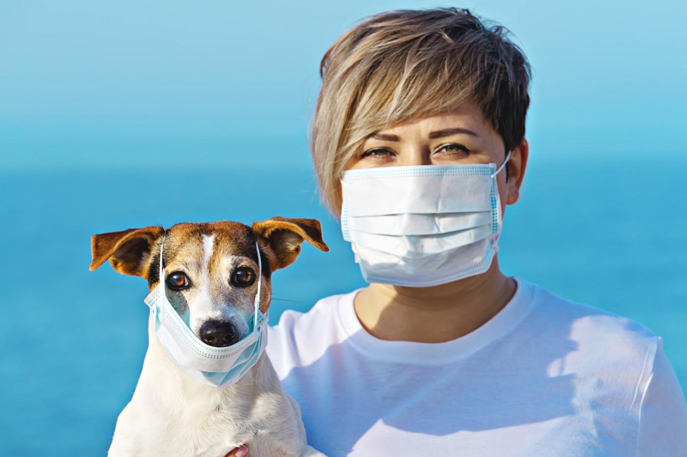 WHO: nie ma dowodów na to, by psy, koty i inne zwierzęta domowe mogły zakazić się koronawirusem
