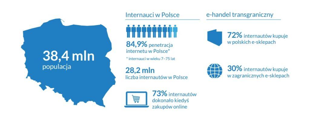 internauci w polsce 2020